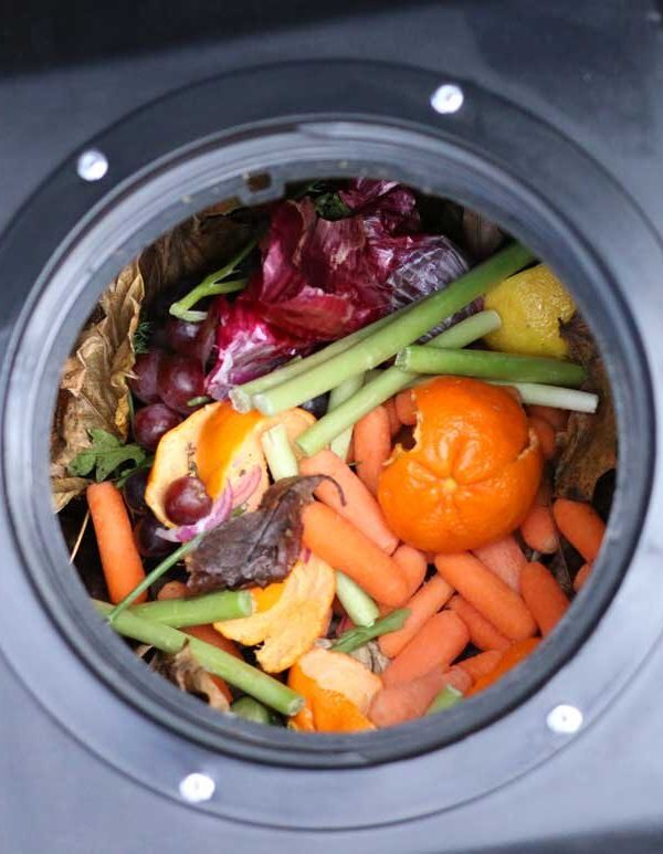 Why You Can – and Should! ~ Compost